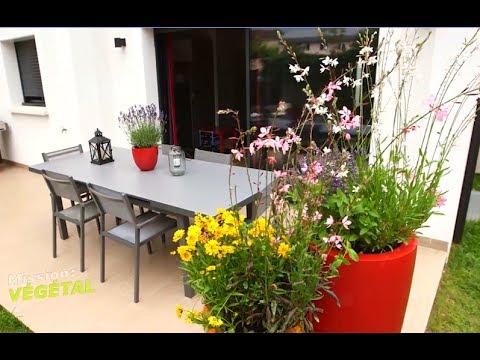 de belles plantes pour lutter naturellement contre les moustiques youtube. Black Bedroom Furniture Sets. Home Design Ideas