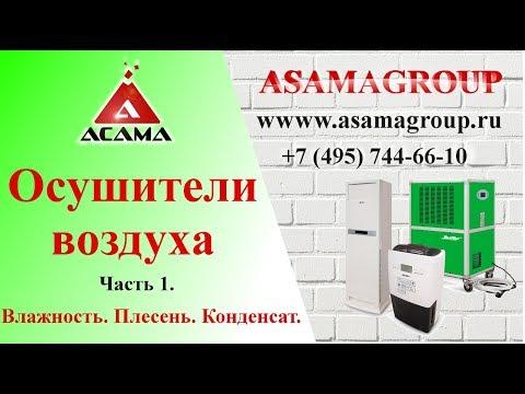 Плесень, грибок, влага, конденсат. Как удалить? Осушитель воздуха лучшее средство! Asamagroup.ru