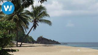 """Tobago - Insel in der Karibik (Reisedokumentation in HD aus der Reihe """"Caribbean Moments"""")"""