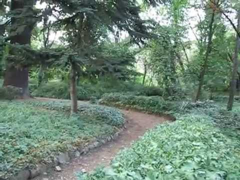 National Botanical Garden of Georgia (Tbilisi) / საქართველოს