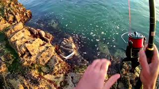 Bass Fishing off the Rocks.