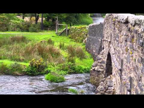 Exploring Dartmoor: Beautiful Postbridge!