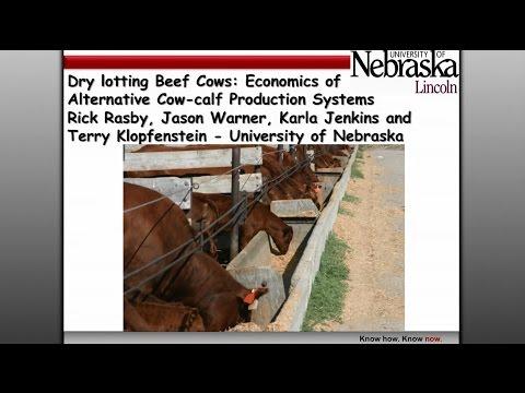 Rick Rasby - Economics of Alternative Cow/Calf Production Systems