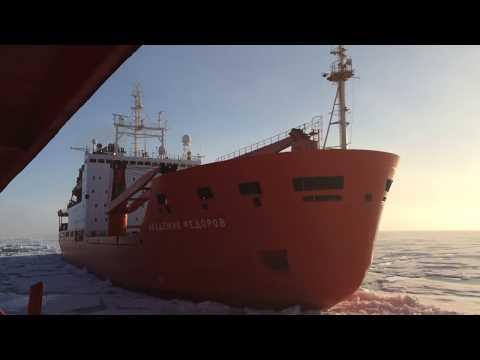 Research vessel Akademik Fedorov in pack ice.