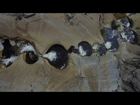 Seven Teacups- Unique Geological Formation (4K Aerial Footage)