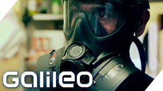 Gasmaskenkoch   Galileo Lunch Break