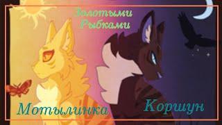 Коршун и Мотылинка ~ Золотыми Рыбками | Коты-Воители