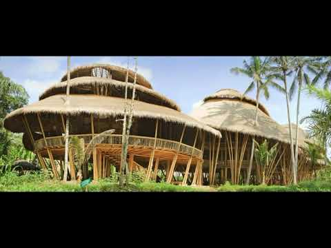 50 Best Bamboo House Ideas