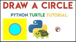 Python Turtle - Draw a Circle Tutorial