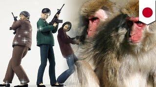 サルなど野生動物による被害が相次いでいるのを受け、神奈川県伊勢原市...