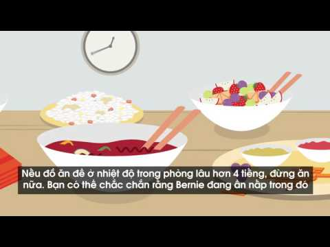 Eat Food Safe  - Vietnamese
