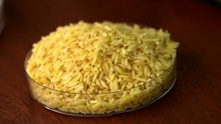 GMO debate grows over golden rice in the Philippines