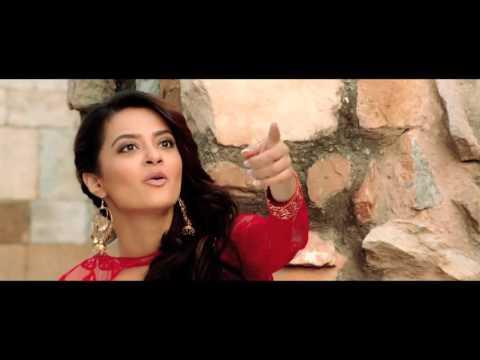 Happy Birthday   Disco Singh   Diljit Dosanjh   Surveen Chawla   Releasing 11th April 2014