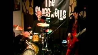 THE SHAGGWELLS -  PLEASE PLEASE ME