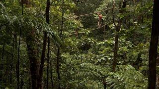 Conquering Fear in the Jungle Canopy | American Tarzan