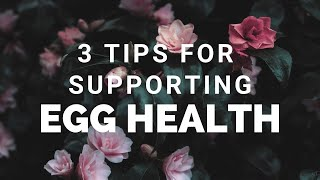 3 Tips for Supp๐rting Egg Health