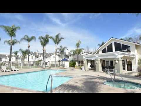 Citrus Court Apartments