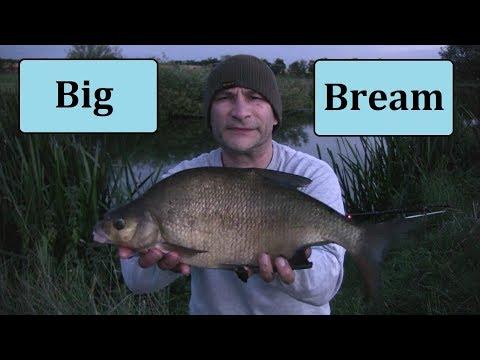 Big Bream River Fishing - Drop-backs, Drop-offs & Tactics - 2017 River Campaign - 9/8/17 (Video 30)