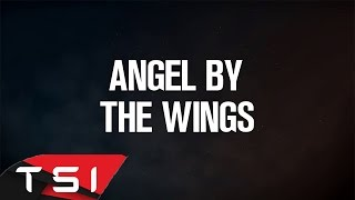 Watch Sia Angel By The Wings video