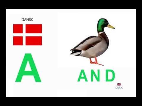 Học chữ cái tiếng Đan Mạch