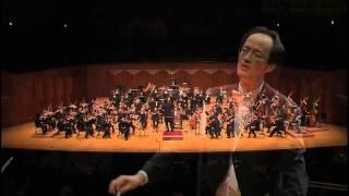 P. I. Tchaikovsky Symphony No.5 in e minor, Op. 64 - II. Andante cantabile con alcuna licenza
