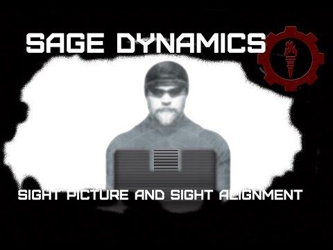 Sight Picture and Sight Alignment