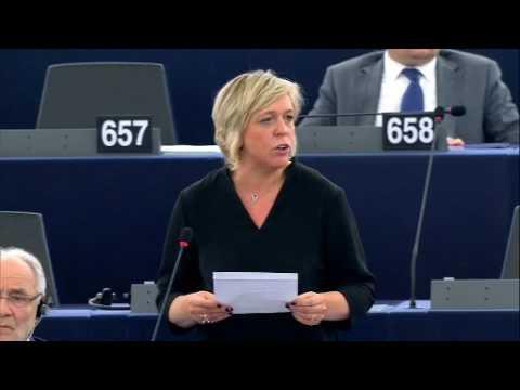Hilde Vautmans 14 Feb 2017 plenary speech on the West Bank