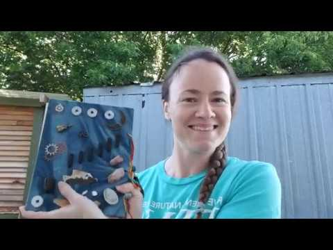 Backyard Science- Make Your Own Nature Journal!