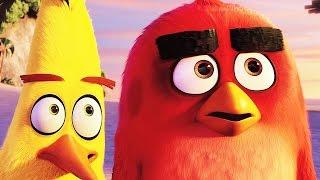 Angry Birds В Кино 2016 - Трейлер Дублированный (Мультик)