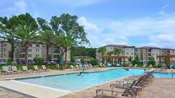 Oasis at Lake Bennet Apartments in Ocoee, FL - ForRent.com
