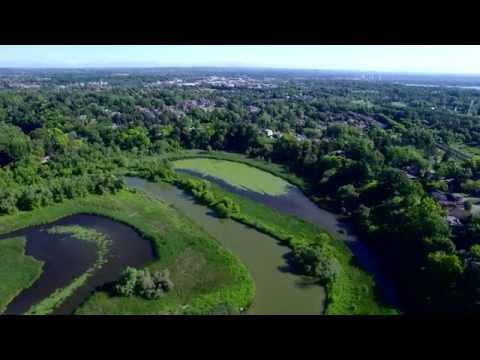 Rouge Park Beach Area 4K - Aerial Drone