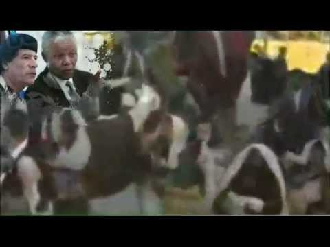 Muammar Gaddafi is the hero of Africa - The clip.