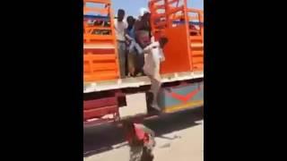 شاهد عملية ترحيل مواطنين من محافظة عدن بإتجاه تعز وبقية المحافظات