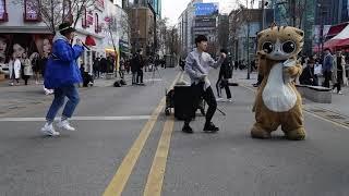 JHKTV] 신촌 명물고양이와 양&최  shin…