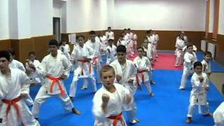 Antrenamente Karate - Progresul Cernica 2/8