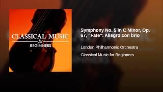 Baixar Symphony No. 5 in C Minor, Op. 67,