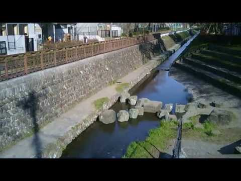 JJRC H6C Quadcopter Video Sample