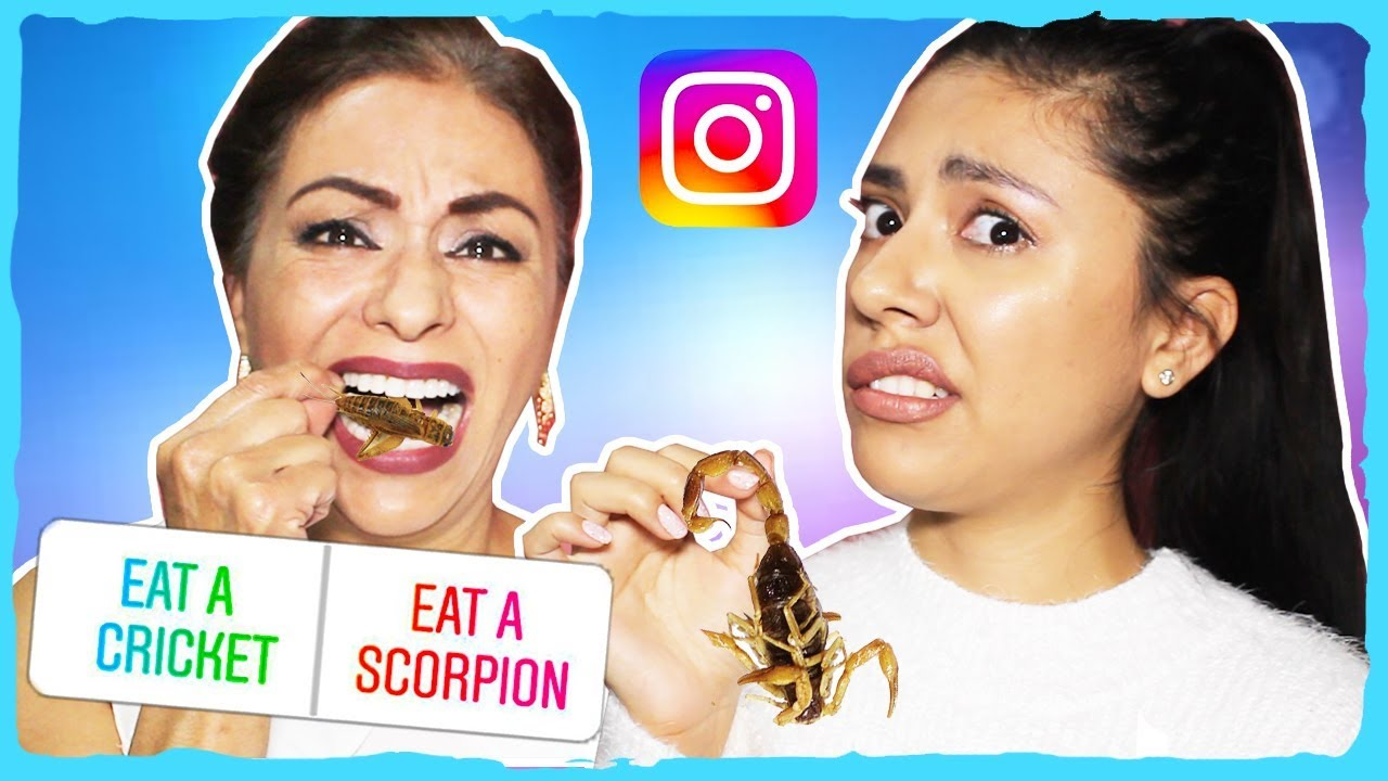 i-let-my-instagram-followers-control-what-we-eat-crickets-worms-scorpions
