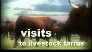 DVD Sommet de l'Elevage 2009 - French Agriculture show - English version