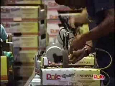 DOLE Pineapple Packing