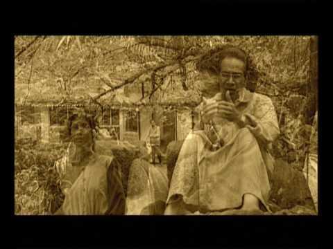 Trailer Symphony of Cuckoos