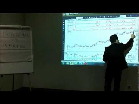 Trader Amatiran Hasil Profesional.wmv