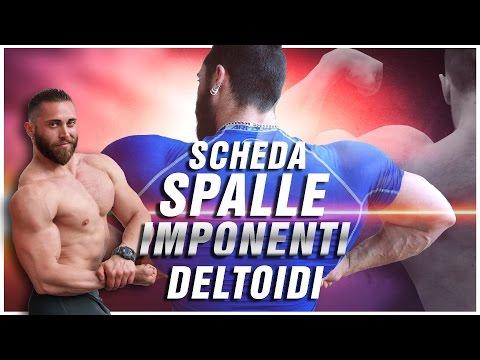 Scheda SPALLE - DELTOIDI esercizi per aumento massa muscolare ▪ Team Commando