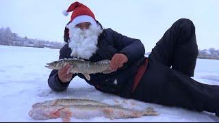 Рыбалка зимой от Михалыча. Ловля щуки на жерлицы(Супер уловистая удочка на карпа и карася. Боковые кивки, мормышки. Заказываем здесь http://mikhalych.com/ Сумасшедши..., 2014-12-14T16:24:31.000Z)