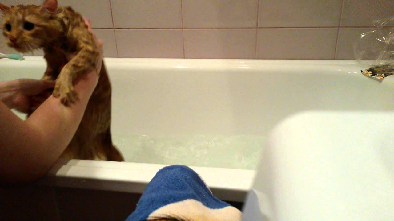 Видео как женщины купаются в ванной с мужиком фото 493-261