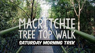 MacRitchie Tree Top Walk | 16.01.16