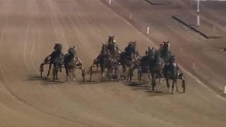 Vidéo de la course PMU PRIX DE ROQUEFORT-LES-PINS