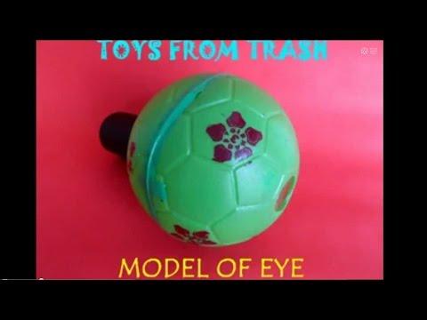Model Of Eye English 16mb Youtube