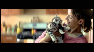 WHISKAS® Nederland - Big Cat Kitten Commercial (2014)