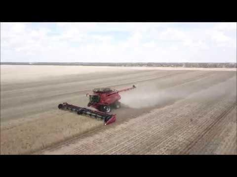 Gleeson Harvest 2017 Victoria Austrailia
